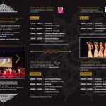danse orientale, cours de danse, houria, reims